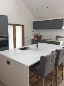 Silver White Quartz Worktop & Gables